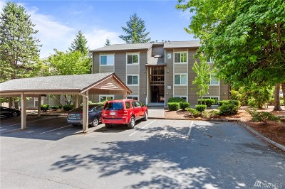 Issaquah Condo/Townhouse For Sale: 204 Mountain Park Blvd SW #C103