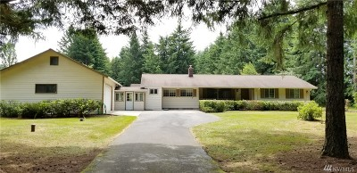 Chehalis Single Family Home For Sale: 133 Vista Rd