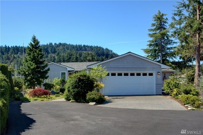 Skagit County Single Family Home For Sale: 194 Salish Place