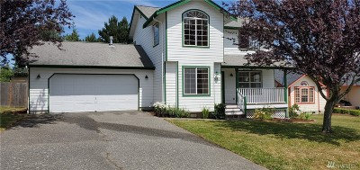 Ferndale Single Family Home Contingent: 2480 Pine Dr