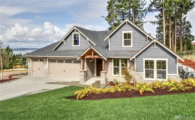 Gig Harbor Single Family Home For Sale: 900 134th St Ct NW