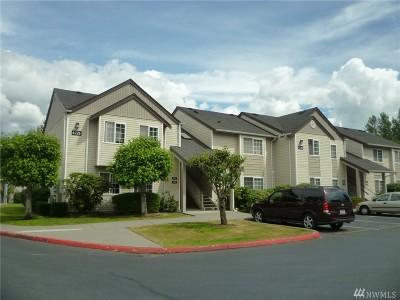Bellingham Condo/Townhouse Contingent: 4226 Wintergreen Cir #293