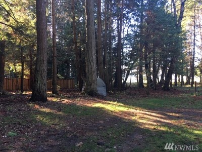 Whatcom County Residential Lots & Land For Sale: 43 Claire Lane