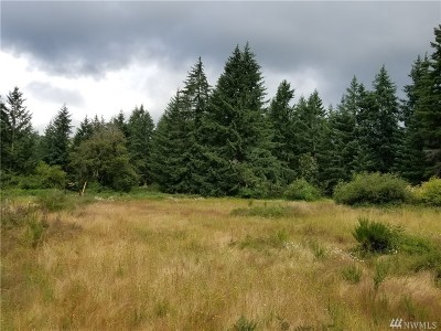 Olympia Residential Lots & Land For Sale: 10103 Old Highway 99