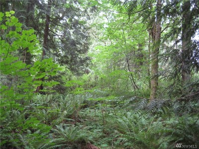 Renton Residential Lots & Land For Sale: 183xx E Spring Lake Dr SE