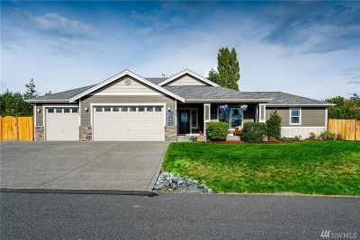 Single Family Home For Sale: 972 Cove View Cir