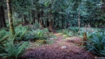 Whatcom County Residential Lots & Land For Sale: 1303 Parkstone Lane