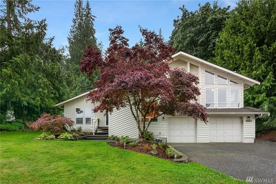 Issaquah Single Family Home For Sale: 2205 Squak Mountain Lp SW