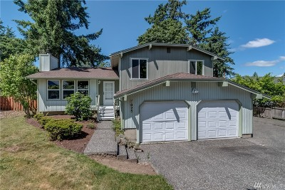 Bellingham Single Family Home For Sale: 3825 Magrath Rd