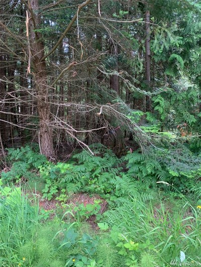 Whatcom County Residential Lots & Land For Sale: 36 Shady Glen