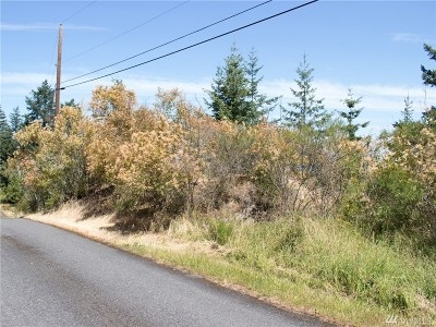 Lummi Island Residential Lots & Land For Sale: 3070 Mt Vista Dr
