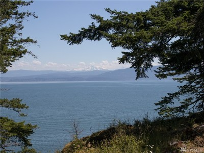 Lummi Island Residential Lots & Land For Sale: 1124 Beach Ave