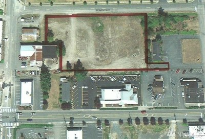 Stanwood Residential Lots & Land For Sale: 9100 272nd NW