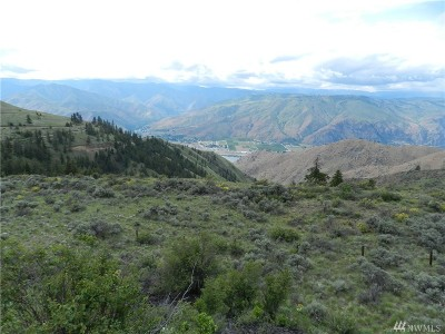 Chelan, Chelan Falls, Entiat, Manson, Brewster, Bridgeport, Orondo Residential Lots & Land For Sale: 12 Porter Rd NW