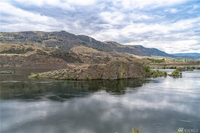 Chelan County, Douglas County Single Family Home For Sale: 11 Riverside Place