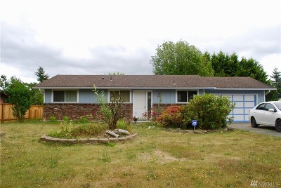 Napavine Single Family Home For Sale: 209 W Vine St