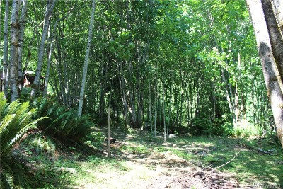 Skagit County Residential Lots & Land For Sale: 53635 Shular Rd