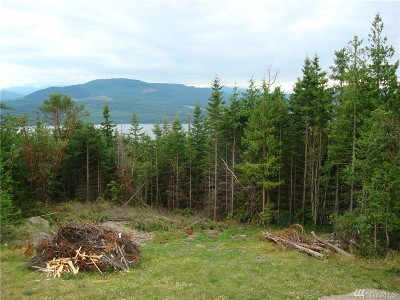 Port Ludlow Residential Lots & Land For Sale: 103 Wells Ridge Ct