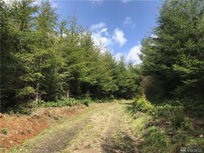 Residential Lots & Land For Sale: Newman Creek Road
