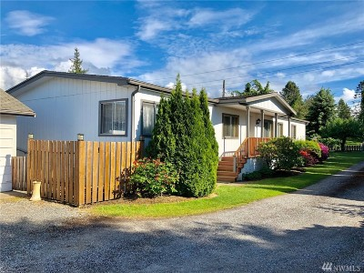 Lynden Single Family Home Pending Inspection: 274 W King Tut Rd
