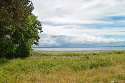 Residential Lots & Land For Sale: 319 Pearsall St SE