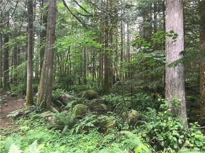 Whatcom County Residential Lots & Land For Sale: 7475 Canyon View Drive