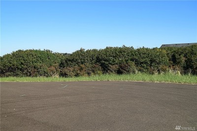 Residential Lots & Land For Sale: 1087 Green View Ave SW