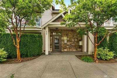 Bellingham Condo/Townhouse For Sale: 4567 El Dorado Wy #217