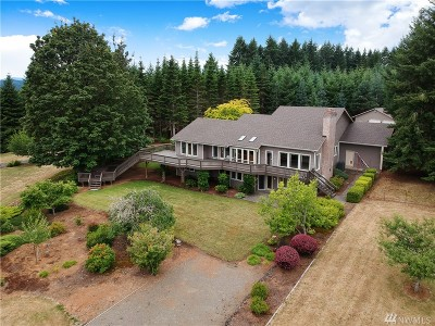 Lewis County Single Family Home For Sale: 217 Brockway Rd