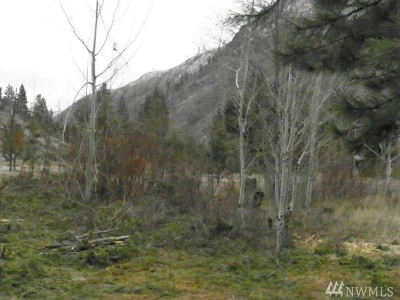 Chelan, Chelan Falls, Entiat, Manson, Brewster, Bridgeport, Orondo Residential Lots & Land For Sale: 24 Parcel D Entiat River Rd