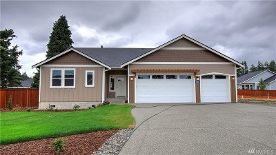Skagit County Single Family Home For Sale: 1785 River Walk Lane