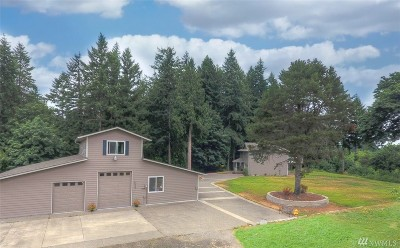 Thurston County Single Family Home For Sale: 6543 Henderson Blvd SE