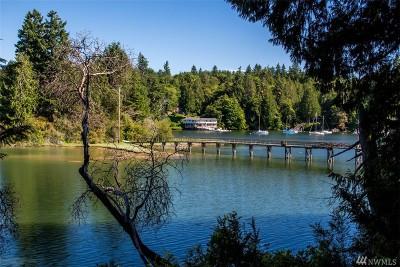 Bainbridge Island Single Family Home For Sale: 15124 Skogen Lane NE