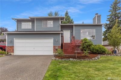 Lake Stevens Single Family Home For Sale: 502 98th Dr NE