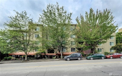 Seattle Condo/Townhouse For Sale: 8745 Greenwood Ave N #507