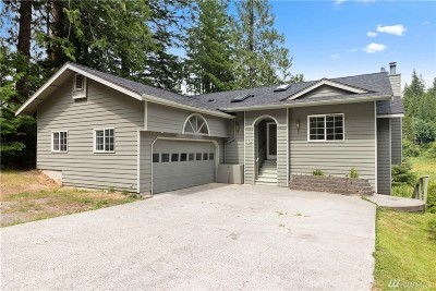Bellingham Single Family Home For Sale: 12 Nighthawk Dr