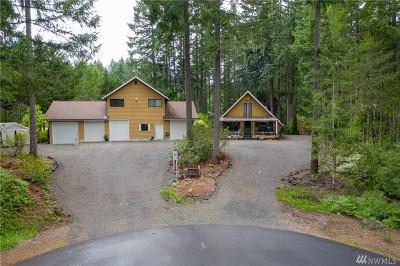 Mason County Single Family Home For Sale: 41 N Par Ct