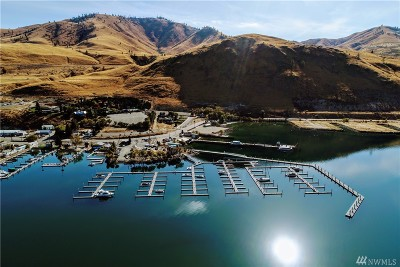 Douglas County, Chelan County Condo/Townhouse For Sale: 1350 W Woodin Ave #D12