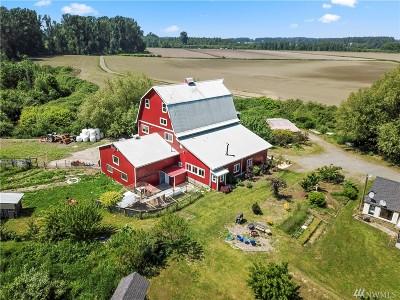 Lynden Single Family Home Pending: 741 River Rd
