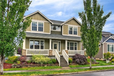 Orting Single Family Home For Sale: 213 Hawk Ave SW