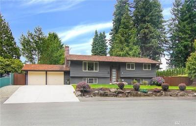 Everett Single Family Home For Sale: 808 Alpine Dr
