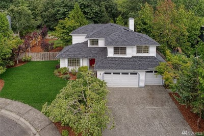 Gig Harbor Single Family Home For Sale: 7969 Beardsley Ave NW