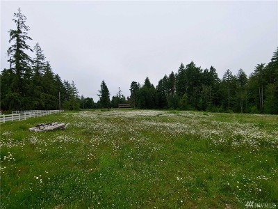 Tenino Residential Lots & Land For Sale: 2331 140th Ave SW