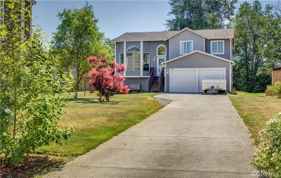 Nooksack Single Family Home For Sale: 212 Allison Wy