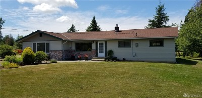 Bellingham Single Family Home For Sale: 5175 Hannegan Rd