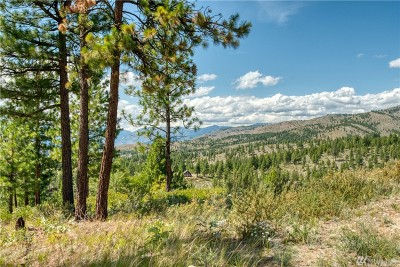 Chelan, Chelan Falls, Entiat, Manson, Brewster, Bridgeport, Orondo Residential Lots & Land For Sale: Cooper Mountain Rd