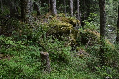 North Bend Residential Lots & Land For Sale: 66203 SE Denny Creek Rd