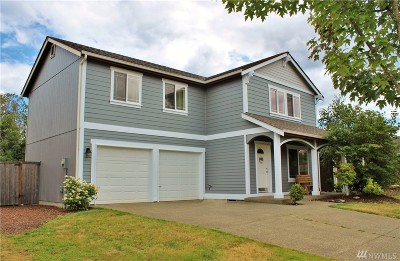 Napavine Single Family Home For Sale: 437 Stadium Lp