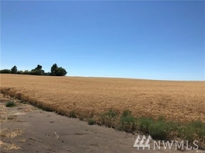Farm For Sale: I.5 Rd NW