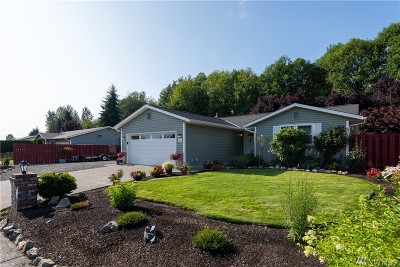 Arlington Single Family Home For Sale: 817 Portage St